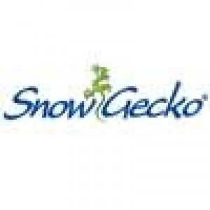 Snow Gecko